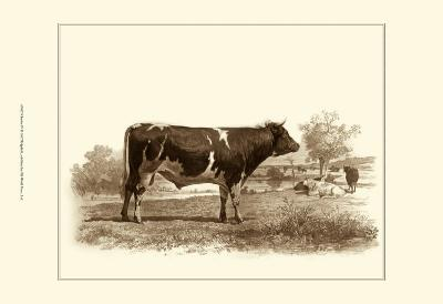 Bovine IV-Emile Van Marck-Art Print