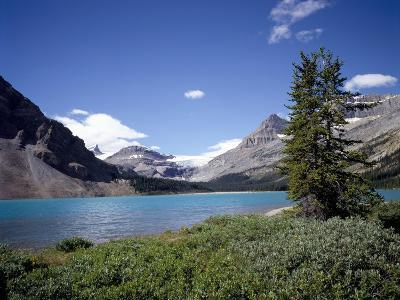 Bow Lake with Bow Glacier Behind, Icefields Parkway, Banff National Park, Alberta-Geoff Renner-Photographic Print