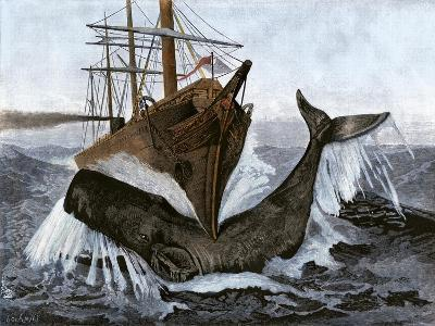 """Bow of the Ship """"Essex"""" Striking a Whale--Giclee Print"""