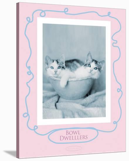 Bowl Dwellers-Rachael Hale-Stretched Canvas Print