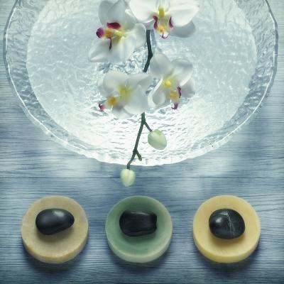 Bowl of Water and Soaps--Photographic Print