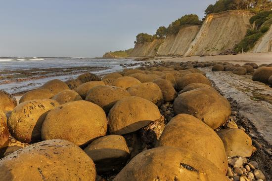 Bowling Ball Beach Near Point Arena California Usa Photographic