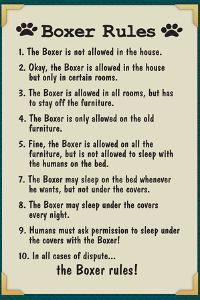 Boxer House Rules