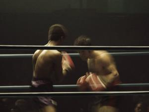 Boxers Seen from Between the Ropes
