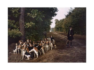 Boy and a Mass of Hounds Wait in the Woods for a Hunt to Begin-Gervais Courtellemont-Photographic Print