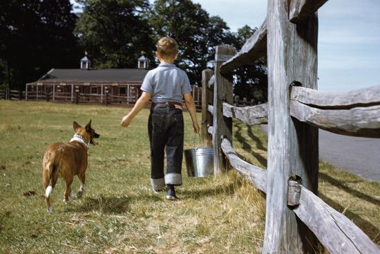 Boy and His Dog Walking Along a Fence-William P^ Gottlieb-Photographic Print