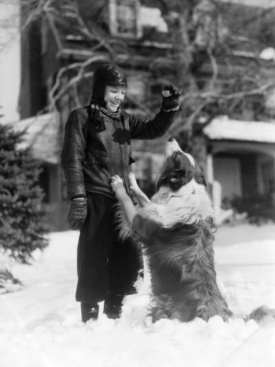 Boy Collie Dog Sitting Up Begging For Treat-H^ Armstrong Roberts-Photographic Print
