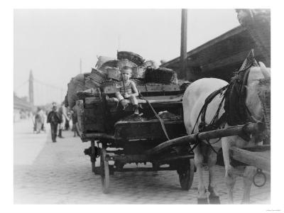 Boy Driving Horse-Drawn Wagon in Hungary Photograph - Hungary-Lantern Press-Art Print