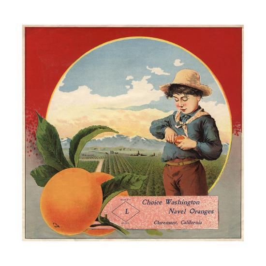 Boy in Orchard - Claremont, California - Citrus Crate Label-Lantern Press-Art Print