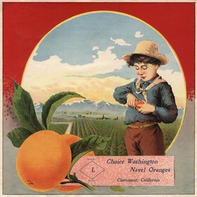 https://imgc.artprintimages.com/img/print/boy-in-orchard-claremont-california-citrus-crate-label_u-l-q1gr4ew0.jpg?p=0
