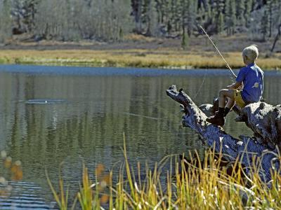 Boy Sits on a Log Trout Fishing in Grass Lake-Gordon Wiltsie-Photographic Print