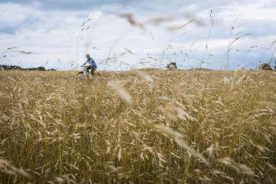 Boy with Bicycle in Grain Field-Ralf Gerard-Photographic Print