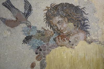 Boy with Dove, Mosaic from Roman Villa in Rabat, Morocco BC--Giclee Print