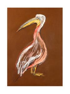 Sketch Of A Pelican by Boyan Dimitrov