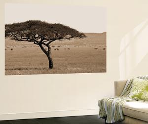 Serengeti Horizons I by Boyce Watt
