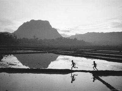 Boys Running Through Flooded Rice Paddy-John Dominis-Photographic Print