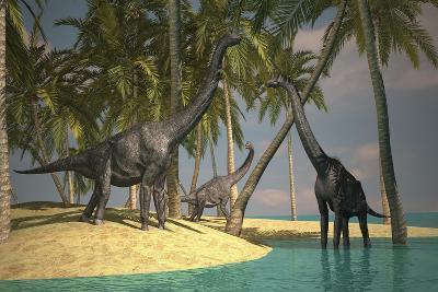 Brachiosaurus Dinosaurs Grazing at the Water's Edge--Art Print