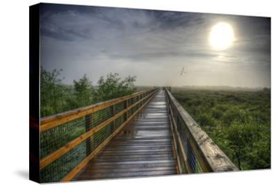 Paynes Prairie State Preserve, Florida: a View of the Prairie During Sunrise