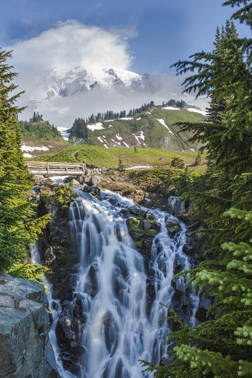 Braided Myrtle Falls and Mt Rainier, Skyline Trail, NP, Washington-Michael Qualls-Photographic Print