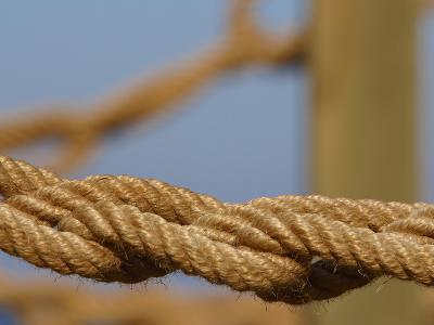 Braided Nautical Rope--Photographic Print