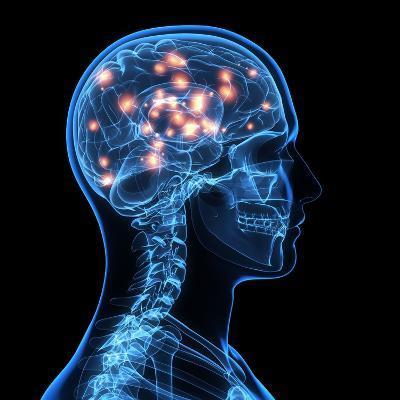 Brain Activity, Artwork-SCIEPRO-Photographic Print