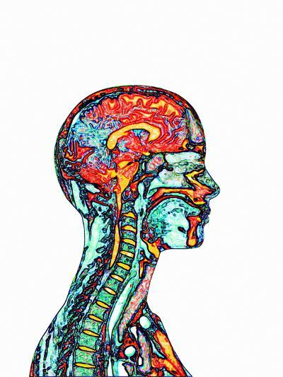 Brain And Spinal Cord, MRI-Mehau Kulyk-Photographic Print