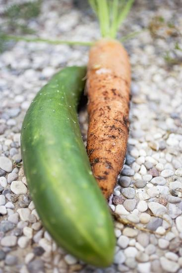 Braising Cucumber and Fresh Carrot-Foodcollection-Photographic Print