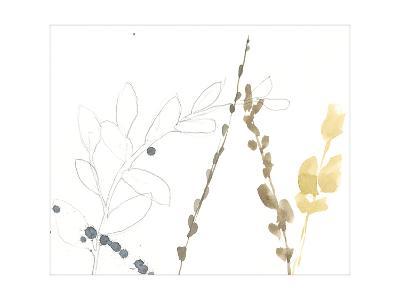 Branch Contours II-Jennifer Goldberger-Premium Giclee Print