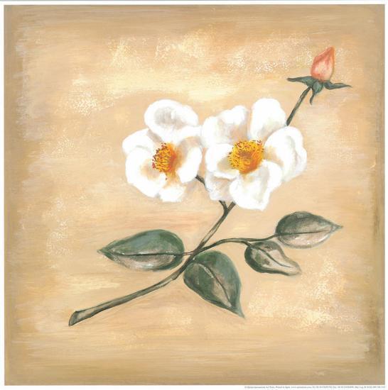 Branch Of White Flower II-Urpina-Art Print