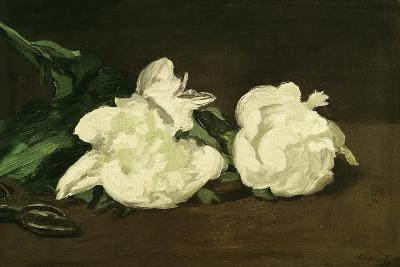 Branch of White Peonies and Secateurs, 1864-Edouard Manet-Giclee Print