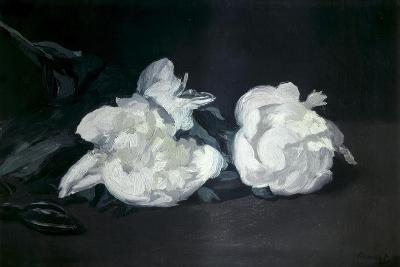 Branch of White Peonies and Secateurs-Edouard Manet-Art Print