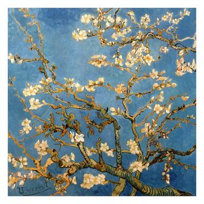 https://imgc.artprintimages.com/img/print/branches-fleuries-d-amandier-detail_u-l-f7tuoo0.jpg?p=0