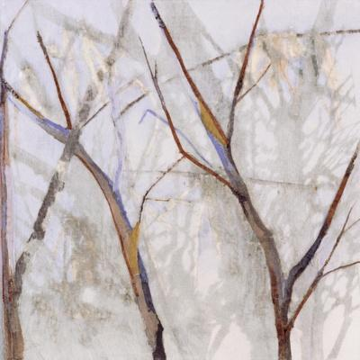 https://imgc.artprintimages.com/img/print/branches-of-a-wish-tree-a_u-l-poamtb0.jpg?p=0