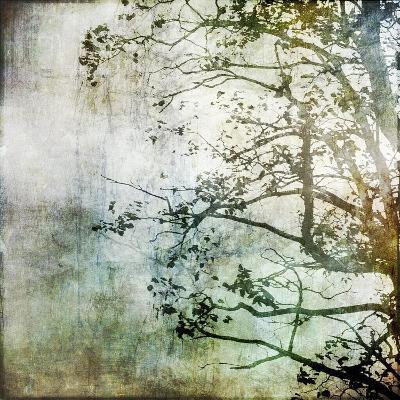 Branching Out-Christine O'Brien-Giclee Print