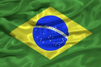 Brazil Flag-Sarah Nicholl-Photographic Print