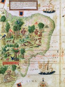"""Brazil from the """"Miller Atlas"""" by Pedro Reinel, circa 1519"""