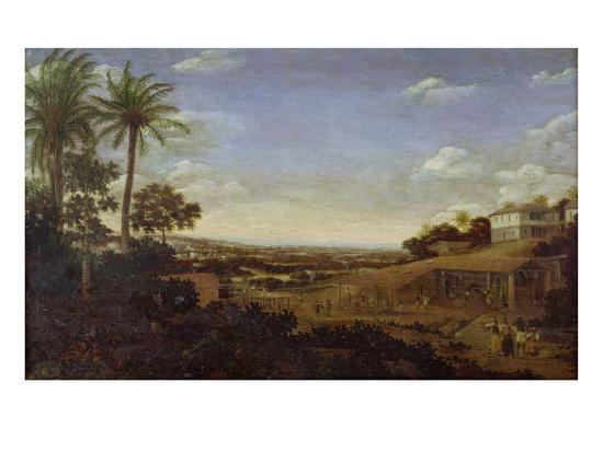 Brazilian Landscape with Sugar Mill, Armadillo and Snake, River Varzea- Post-Giclee Print