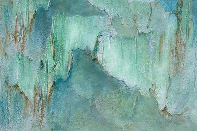 Break Through II-Sheila Finch-Premium Giclee Print