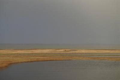 https://imgc.artprintimages.com/img/print/breathing-heavily-after-the-rain-1_u-l-q1gvj2p0.jpg?p=0