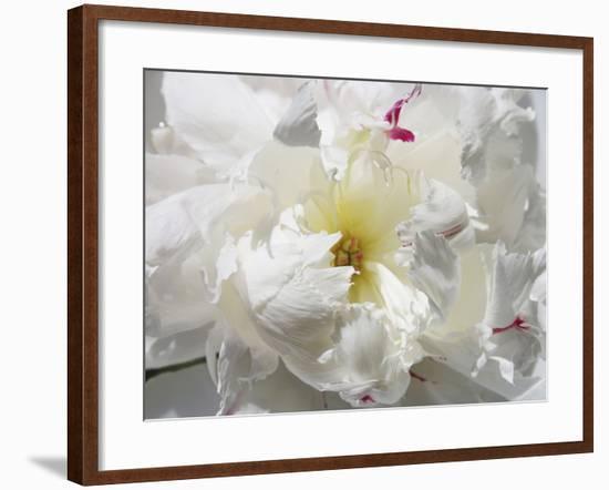 Breathless II-Irena Orlov-Framed Photographic Print