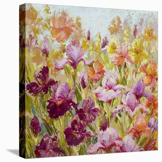 Breathtaking-Nel Whatmore-Stretched Canvas Print