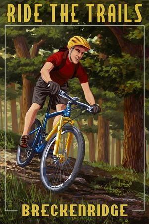 https://imgc.artprintimages.com/img/print/breckenridge-colorado-mountain-biker-in-trees_u-l-q1gpvqz0.jpg?p=0