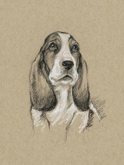 Breed Sketches VI-Ethan Harper-Art Print