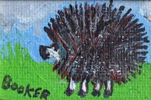 Hedgehog by Brenda Brin Booker