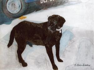 Rex in the Morning at the Used Car Lot by Brenda Brin Booker