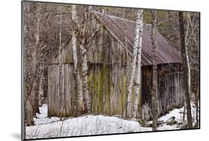 Sharon Barn by Brenda Petrella Photography LLC