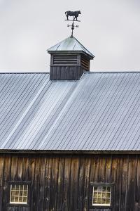 Weathervane by Brenda Petrella Photography LLC