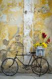 Italy, Tuscany, Pienza. Colorful Petunias Spill from a Basket on a Stone Wall-Brenda Tharp-Photographic Print