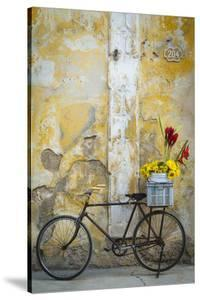 Cuba, Havana. Bicycle with Flowers Leaning Against a Decaying Wall by Brenda Tharp