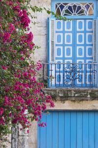 Cuba, Havana. Bougainvillea blooms in Old Town. by Brenda Tharp